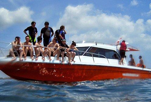 Activities - Boat Charter