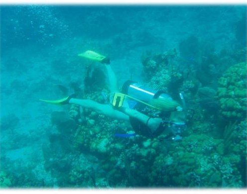 Targeted Scuba Diving