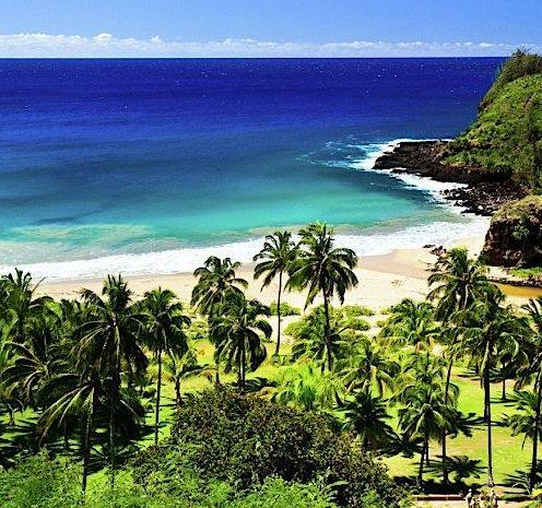 Hawaii guide photo